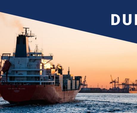 Duimp: iniciada a fase piloto da Declaração Única de Importação