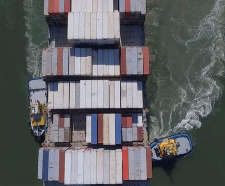 Fluxograma de exportação: passo a passo